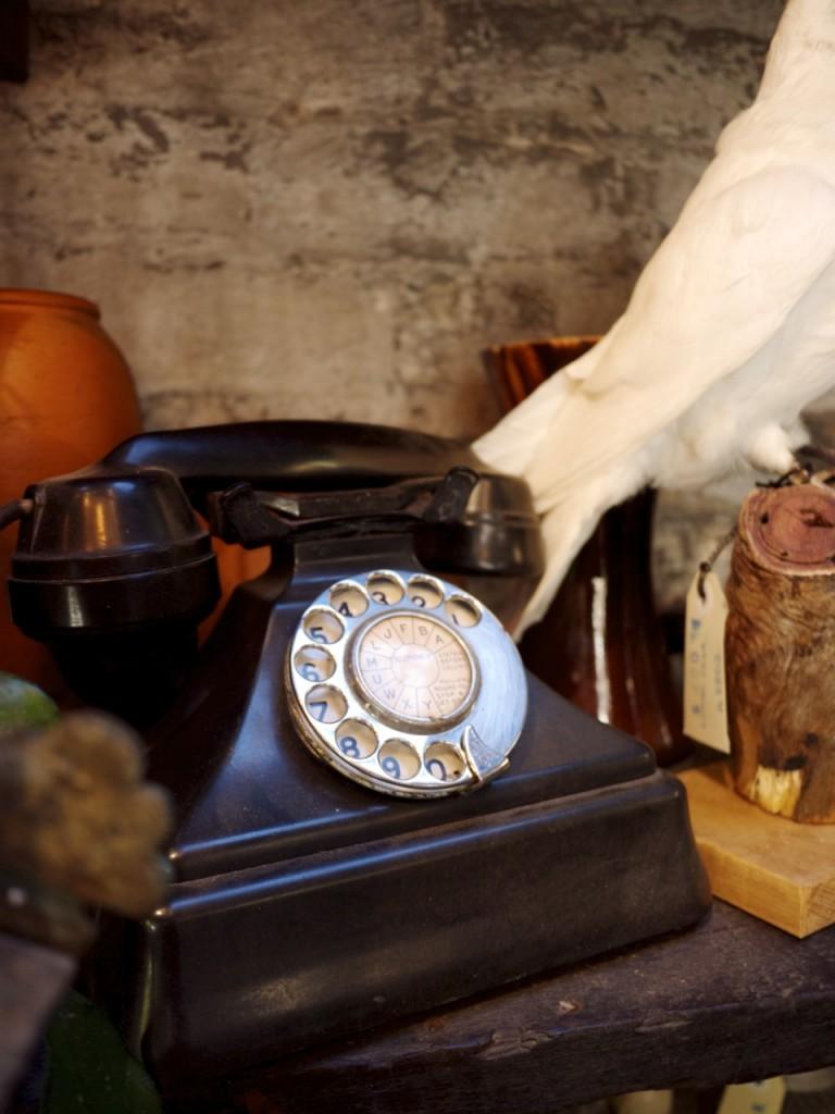 Vintage Telephone - Seasonal Concepts
