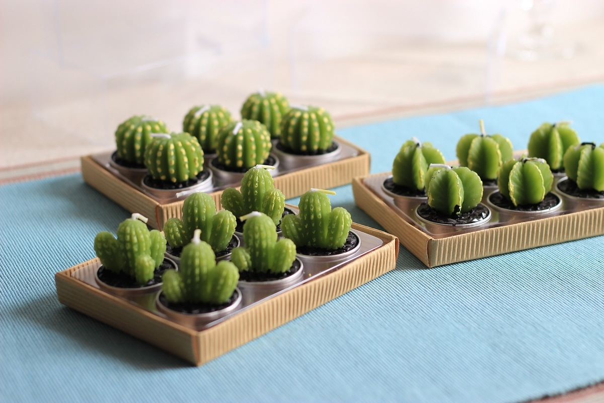 Cactus Styling 5 Ways To Rock This Look The Life Creative