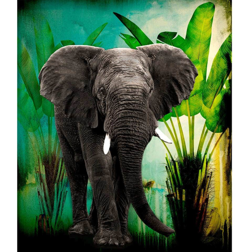 Ellie in The Jungle - Animal Art - Martine Gallery