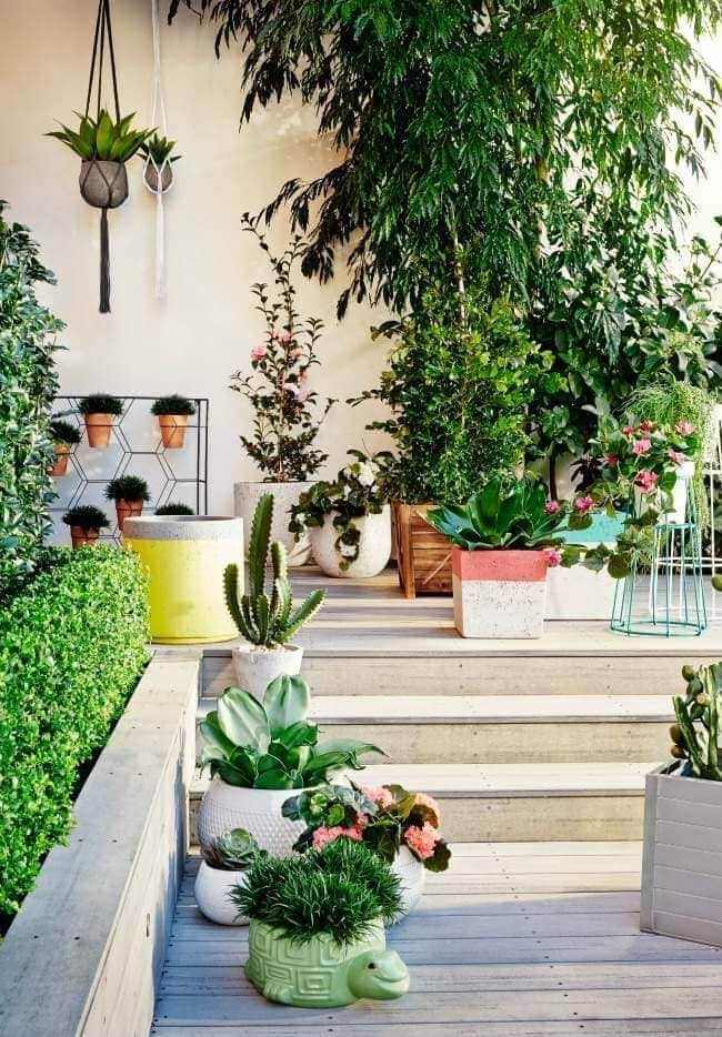 Front Garden Ideas - Planters from Freedom