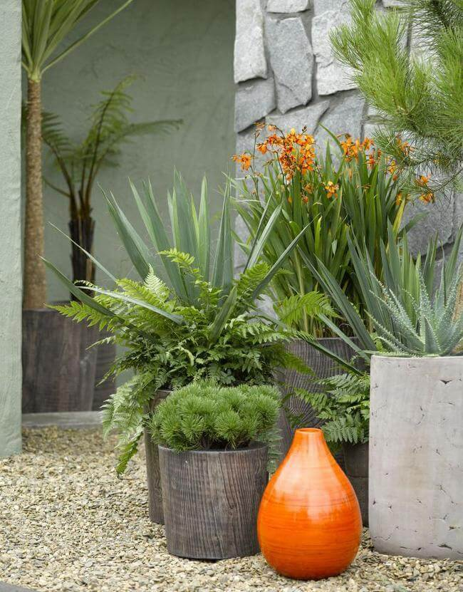Natural Potted Plant Garden Ideas