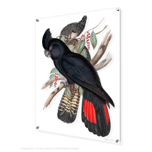 Bird art by Signarture