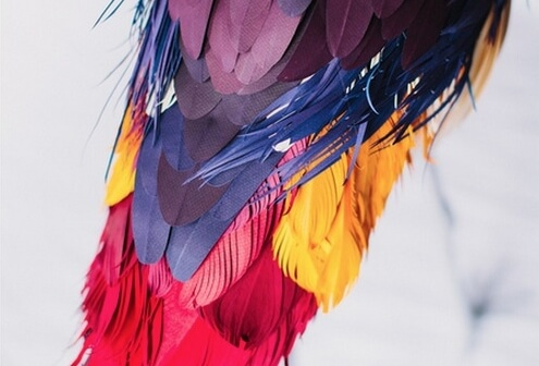 Paper Bird Art