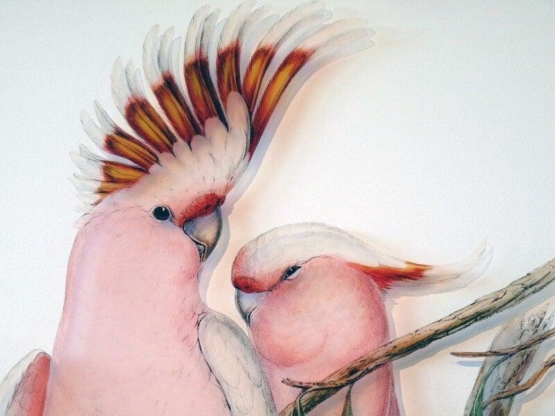 Signarture perspex bird art