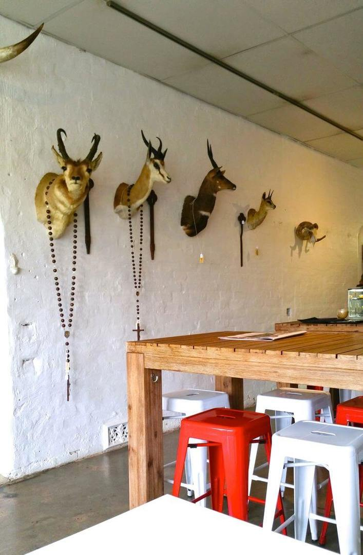 Daseti Cafe in Melbourne - Taxidermy Wall