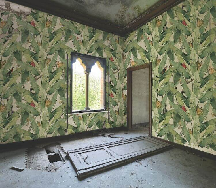 Banana Leaf Wallpaper design from Kingdom Home