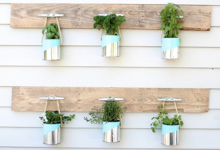 Herb Garden Display Ideas from Matt Leacy