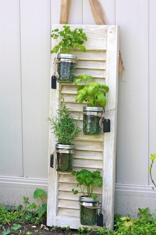 How to grow herbs - tips from Matt Leacy