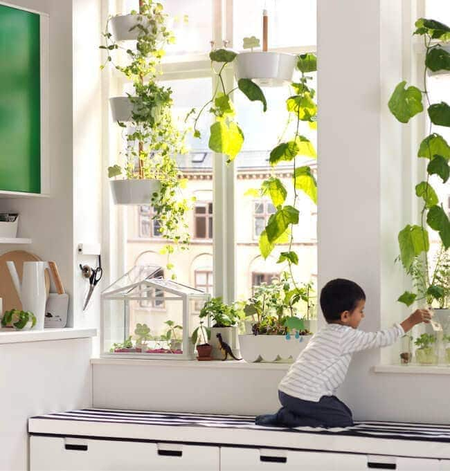 2016 ikea catalogue - indoor greenhouse ideas