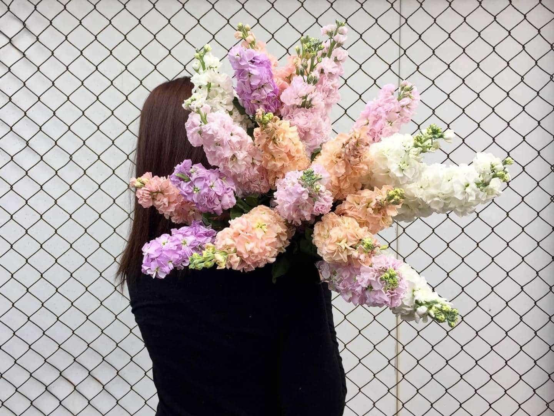 Aussie Florist Names Top 5 Trending Spring Flowers