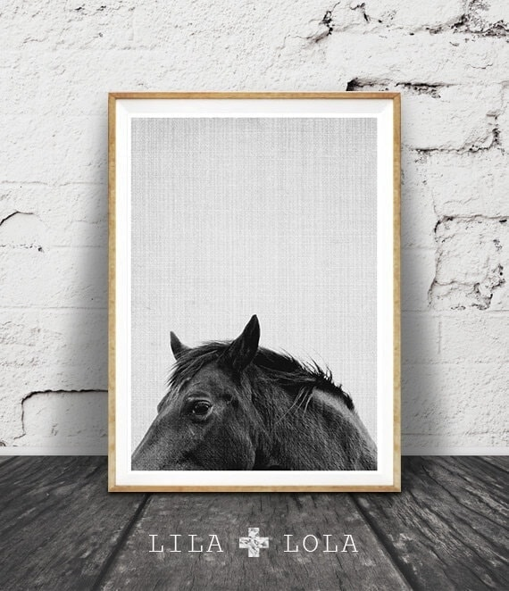 Horse Photography by Lila and Lola on The Life Creative Blog