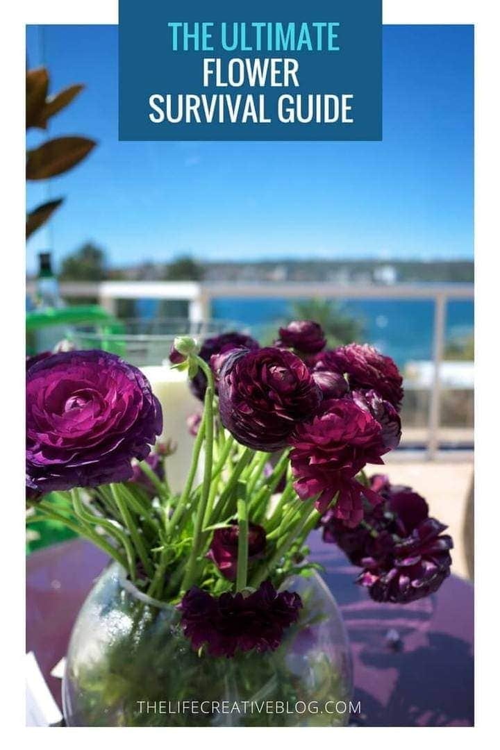 purple flowers in round glass vase on windowsil in modern coastal home