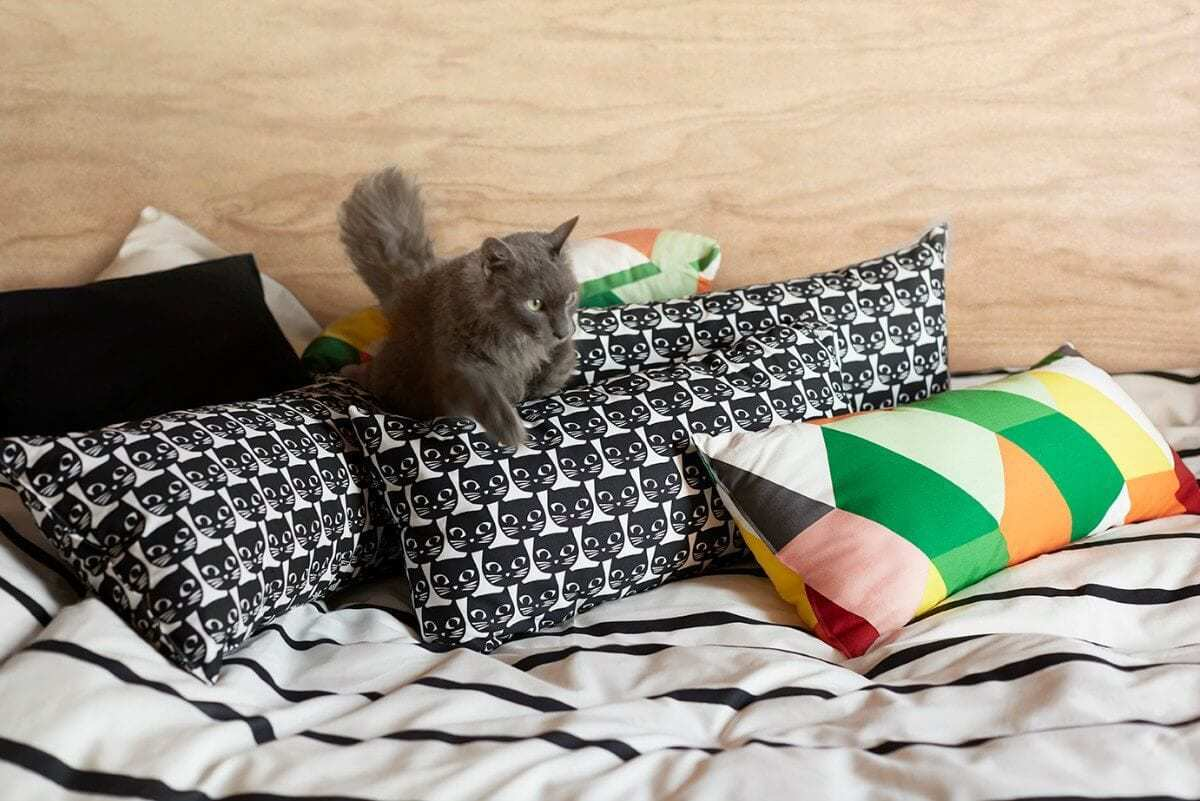 ikea cat fabric ikea australia cat homewares and decor