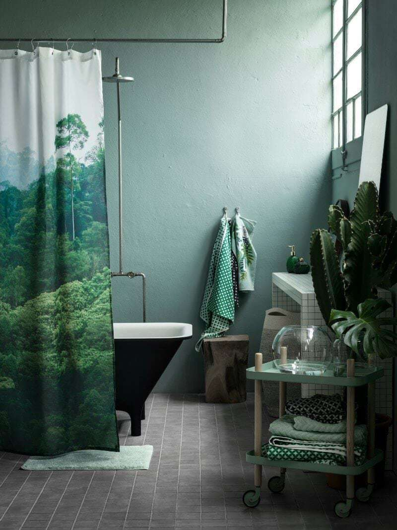 Green bathroom with cactus indoor plant TLC Interiors