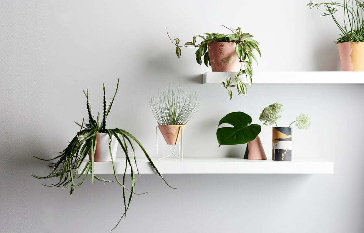 Capra Designs Handsmade plant pots on The Life Creative