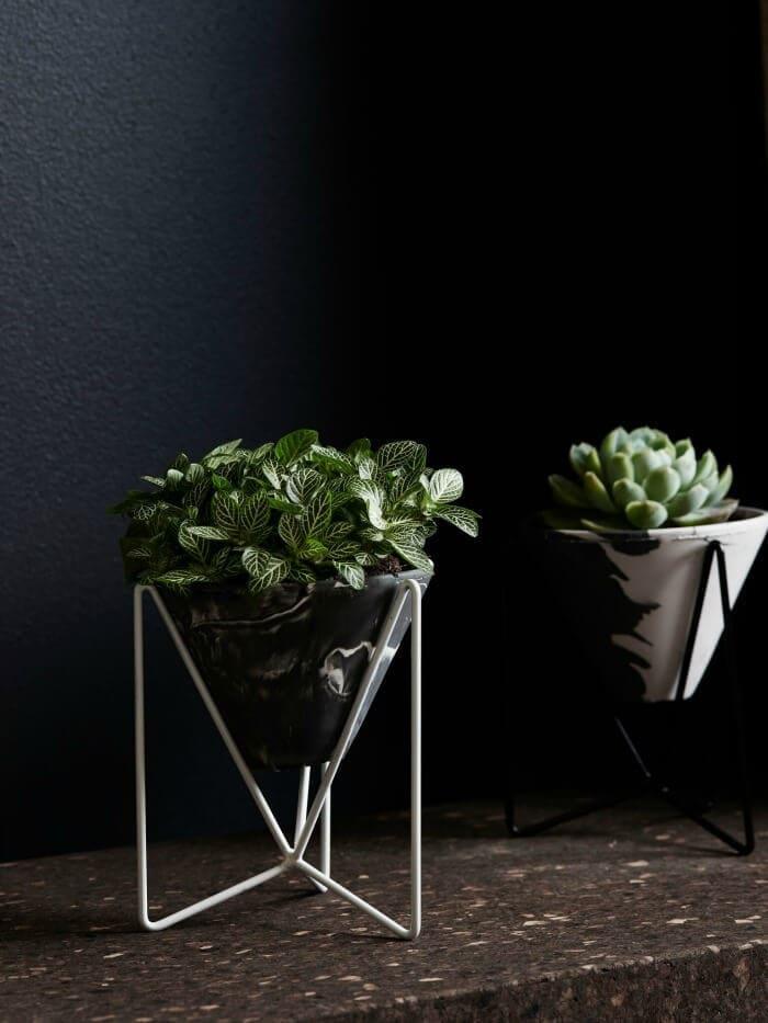 Capra Designs Marble Indoor Plant pot on The Life Creative