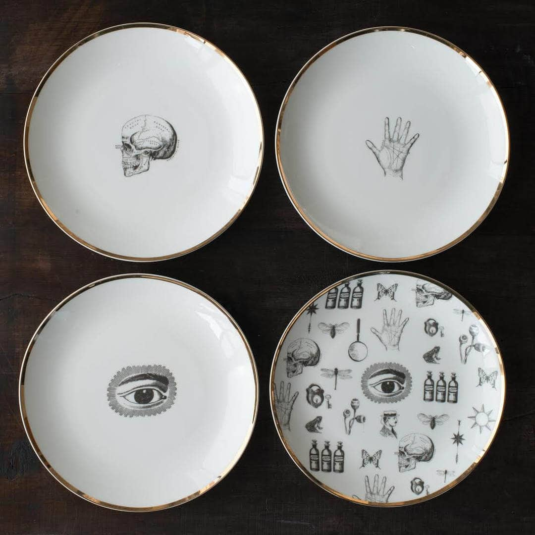 Nel Lusso Art of Science plates Gold Trim Tableware The Life Creative