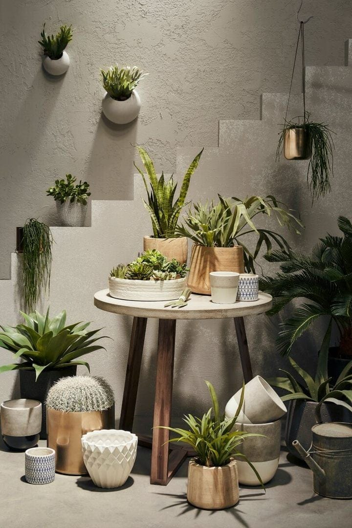 artifical-plants-from-freedom-furniture-cluster-of-plants-in-garden