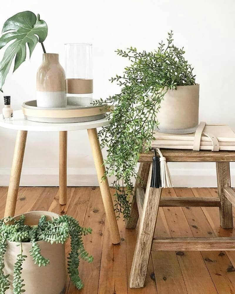 indoor-plants-bohemian-interior-design-ideas-by-dreamcatcher-designs
