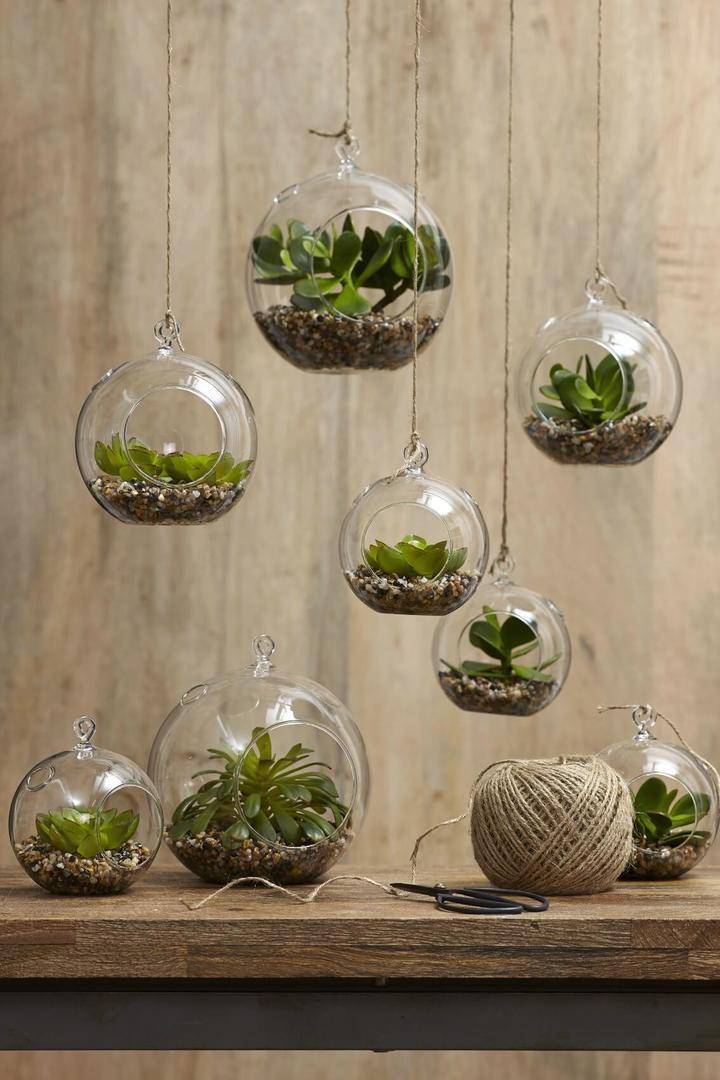 hanging glass terrariums with twine and succulents
