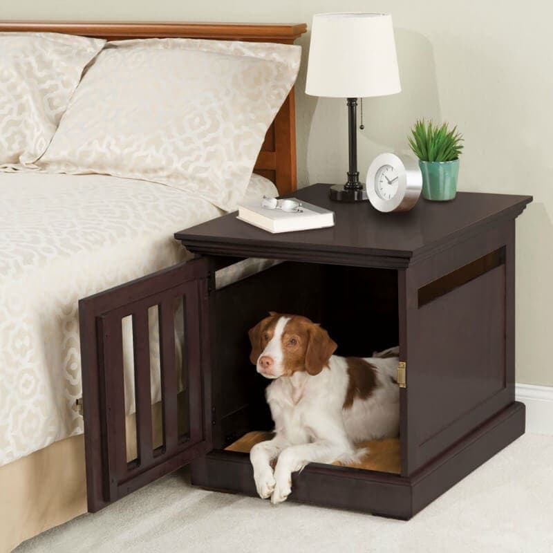 white and brown dog in bedside table bed