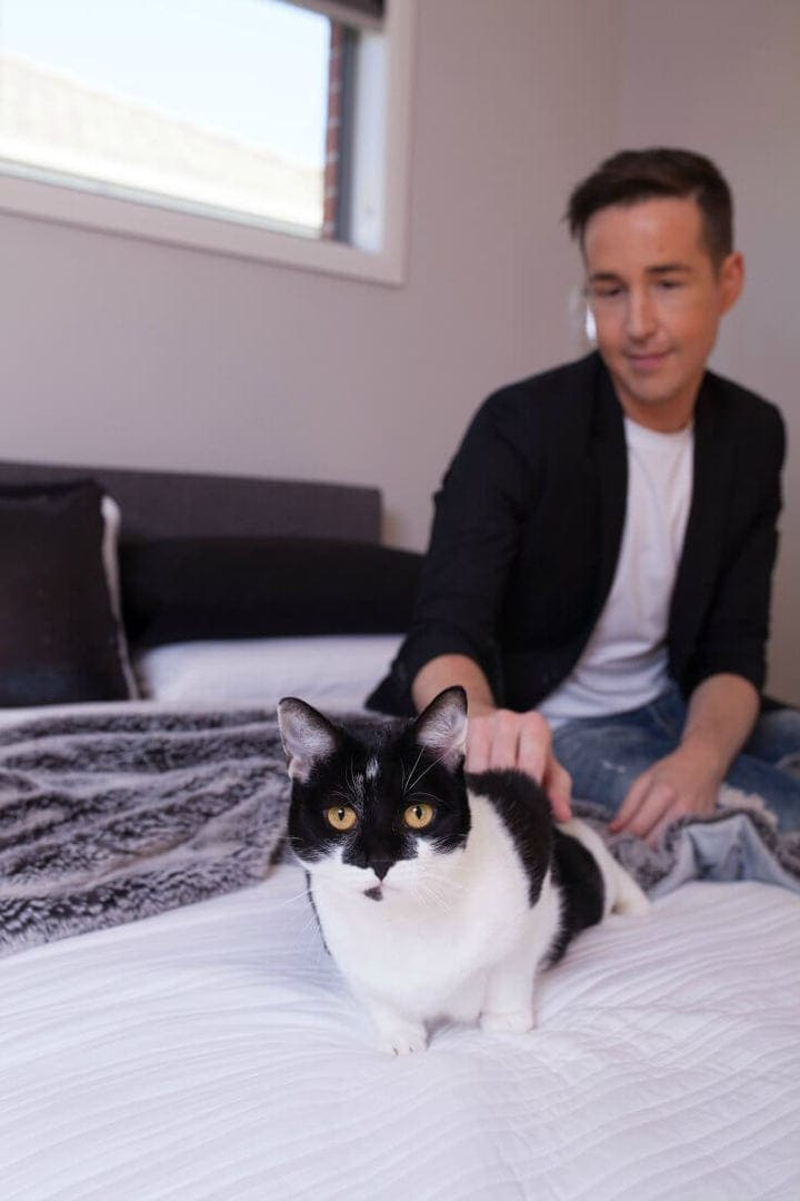black and white cat on white bed with faux fur throw