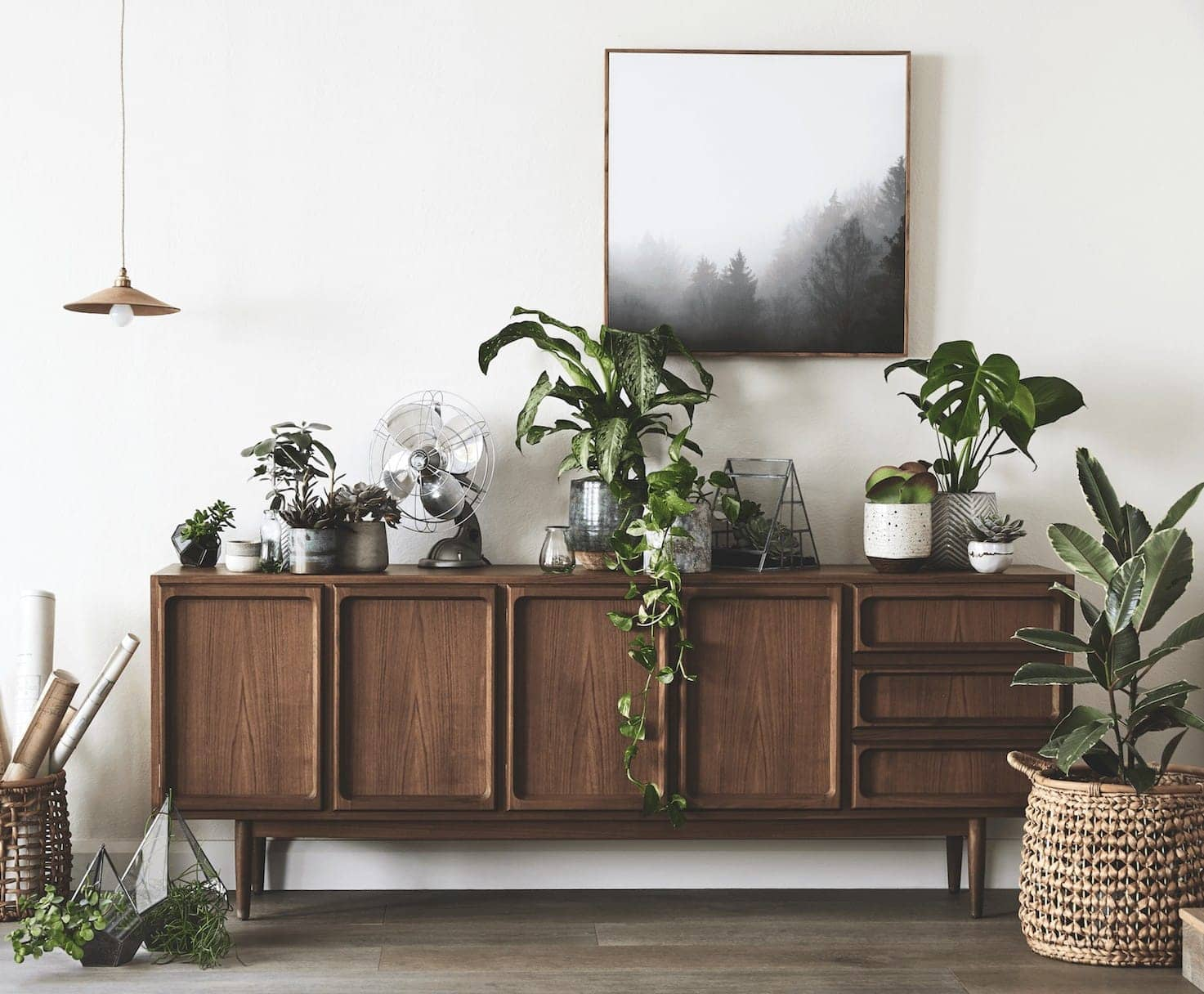 Dark brown sideboard styling with indoor plants on top from Sheridan