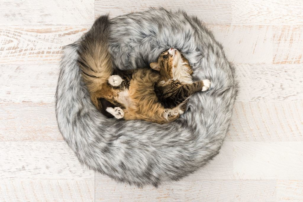 faux fur cat bed from d and c lifestyle