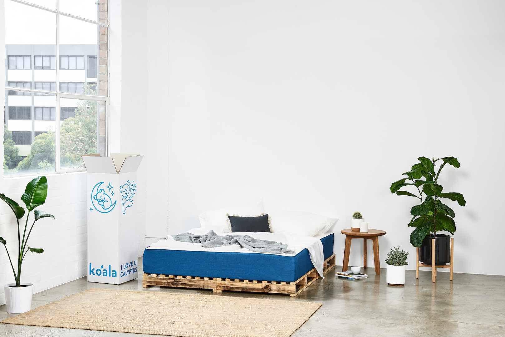 koala mattress on bed in concrete floor bedroom