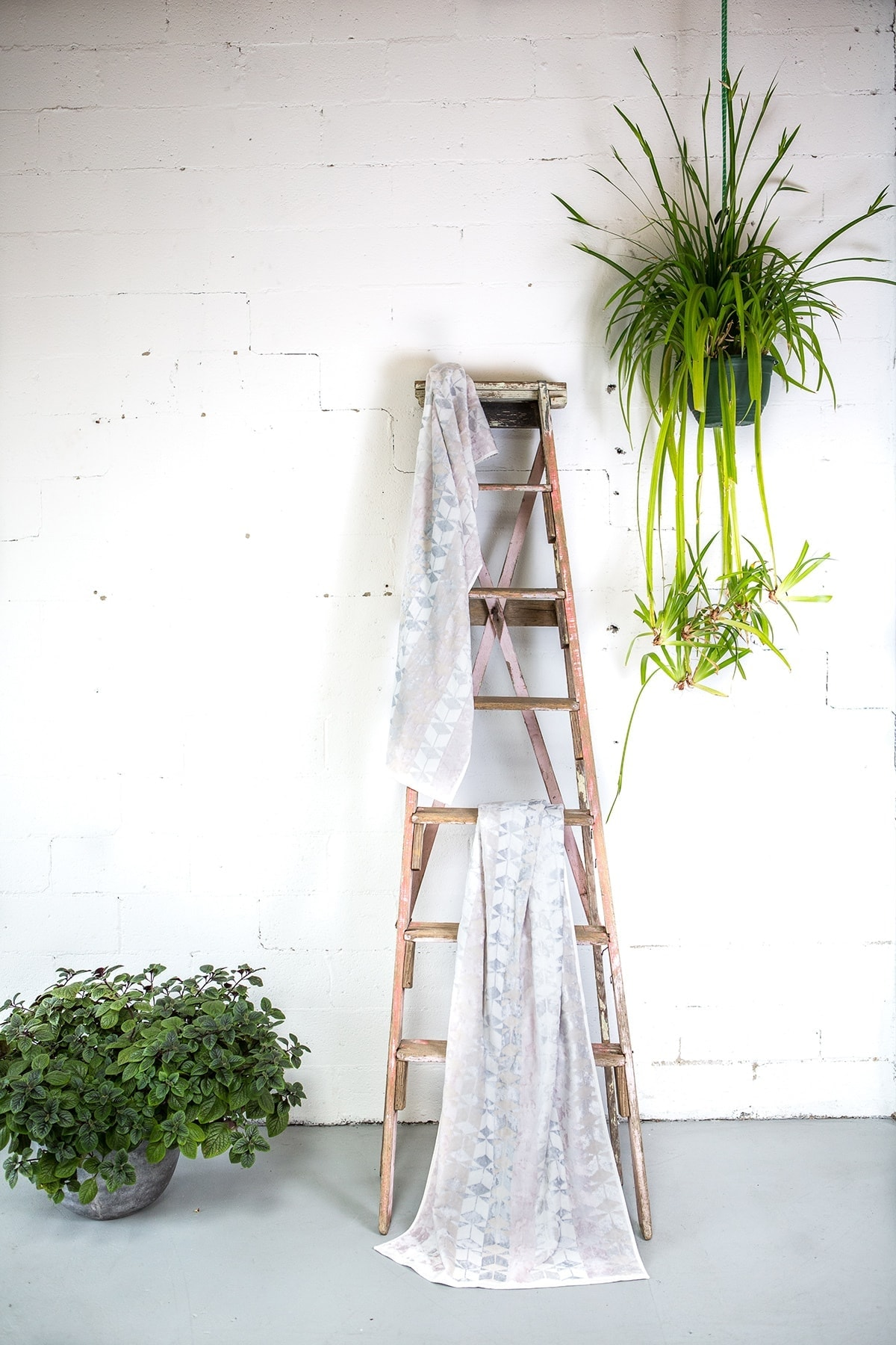 rustic ladder in white bathroom with towels hanging on it and bathroom plants