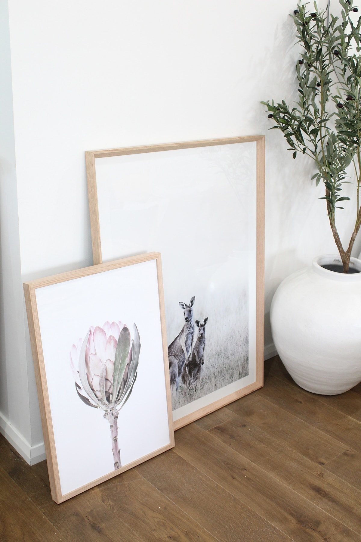 kangaroo artwork and floral artwork from hamptons at home store