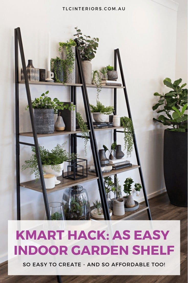 kmart industrial ladder shelf with plants on it