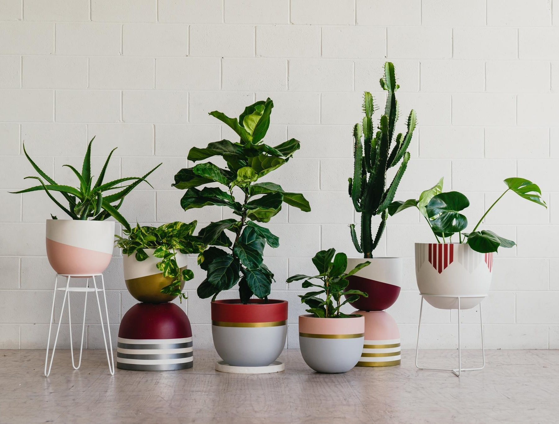 painted plant pots from toast and honey studio in red tones