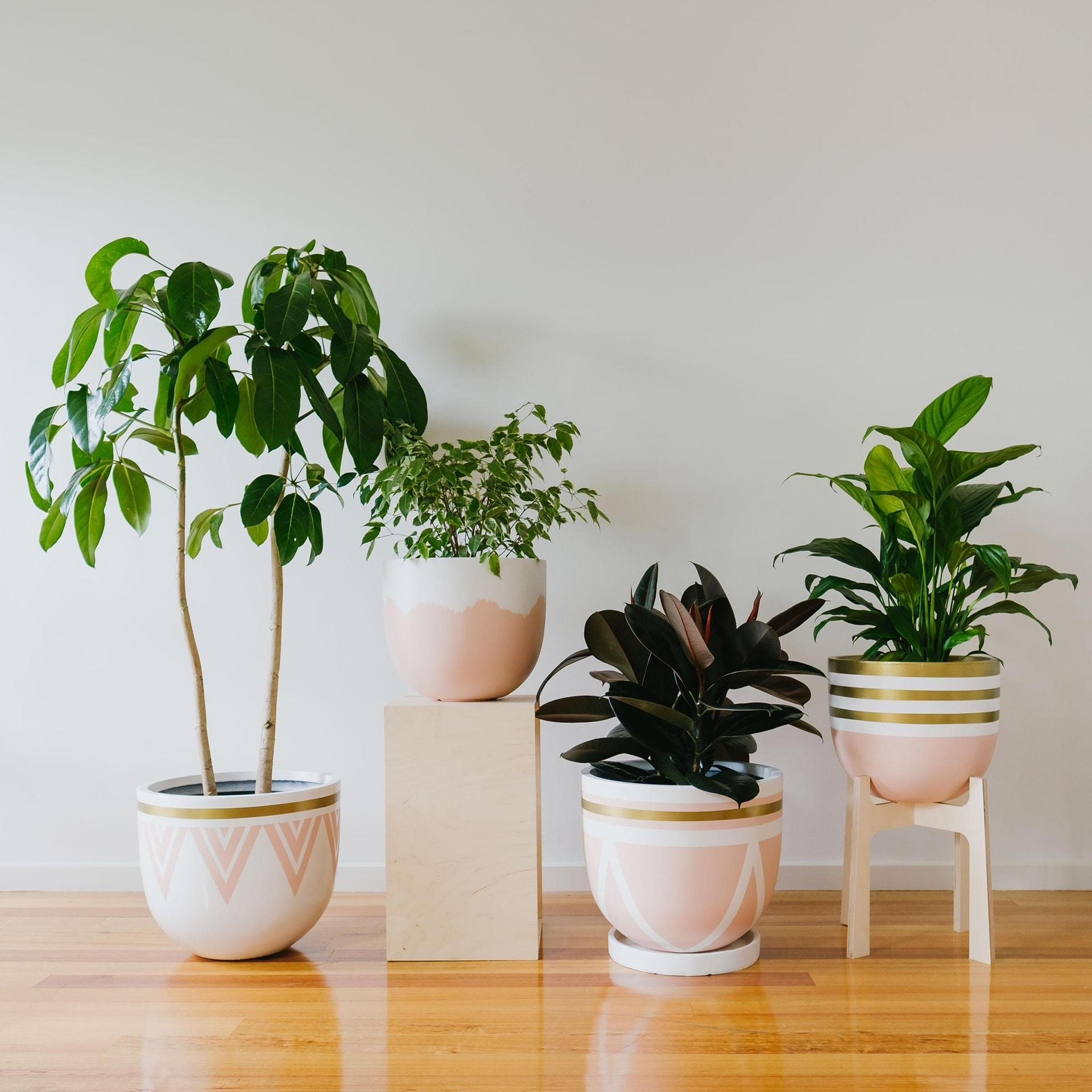 pink plant pots from toast and honey studio