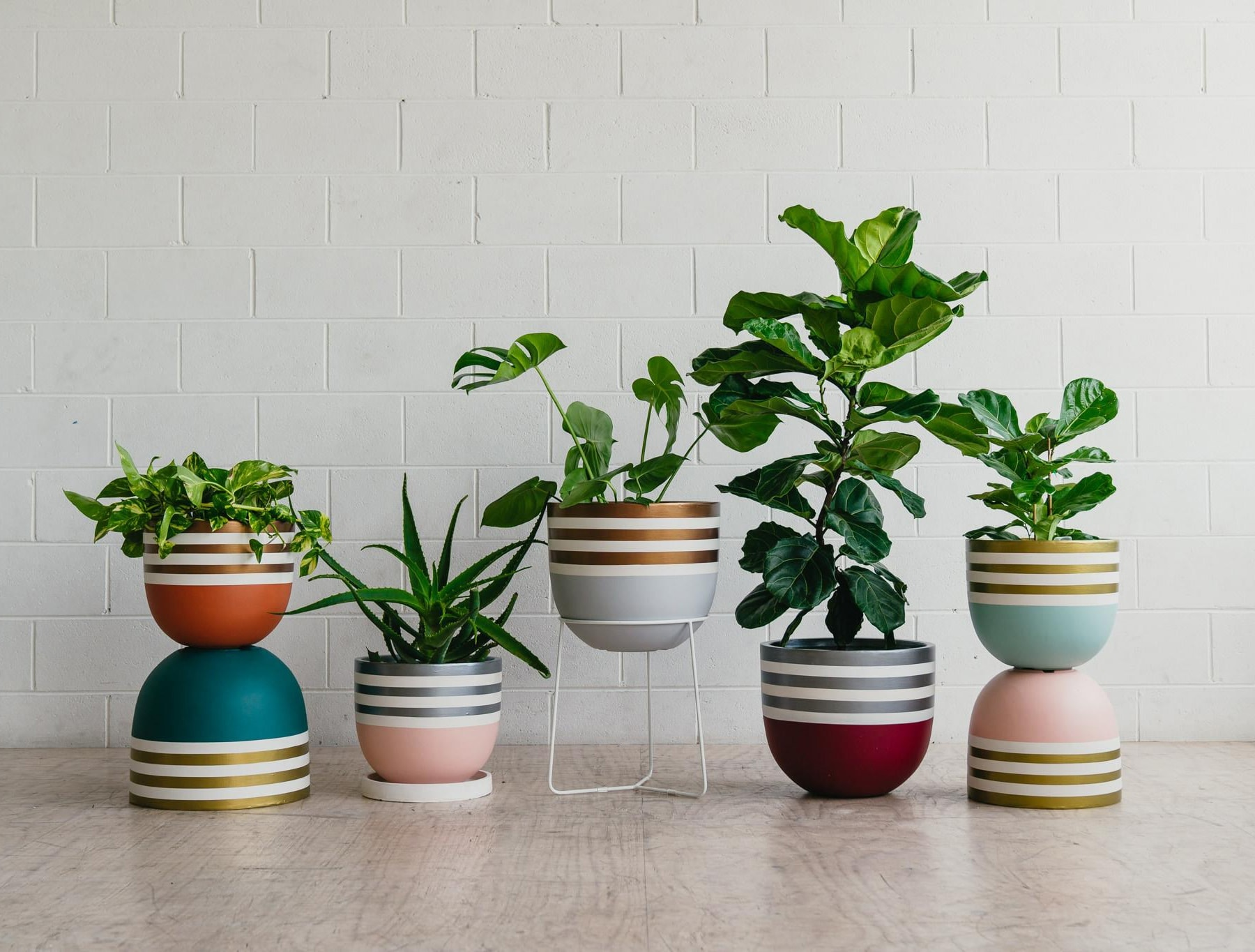 striped designer plant pots from toast and honey