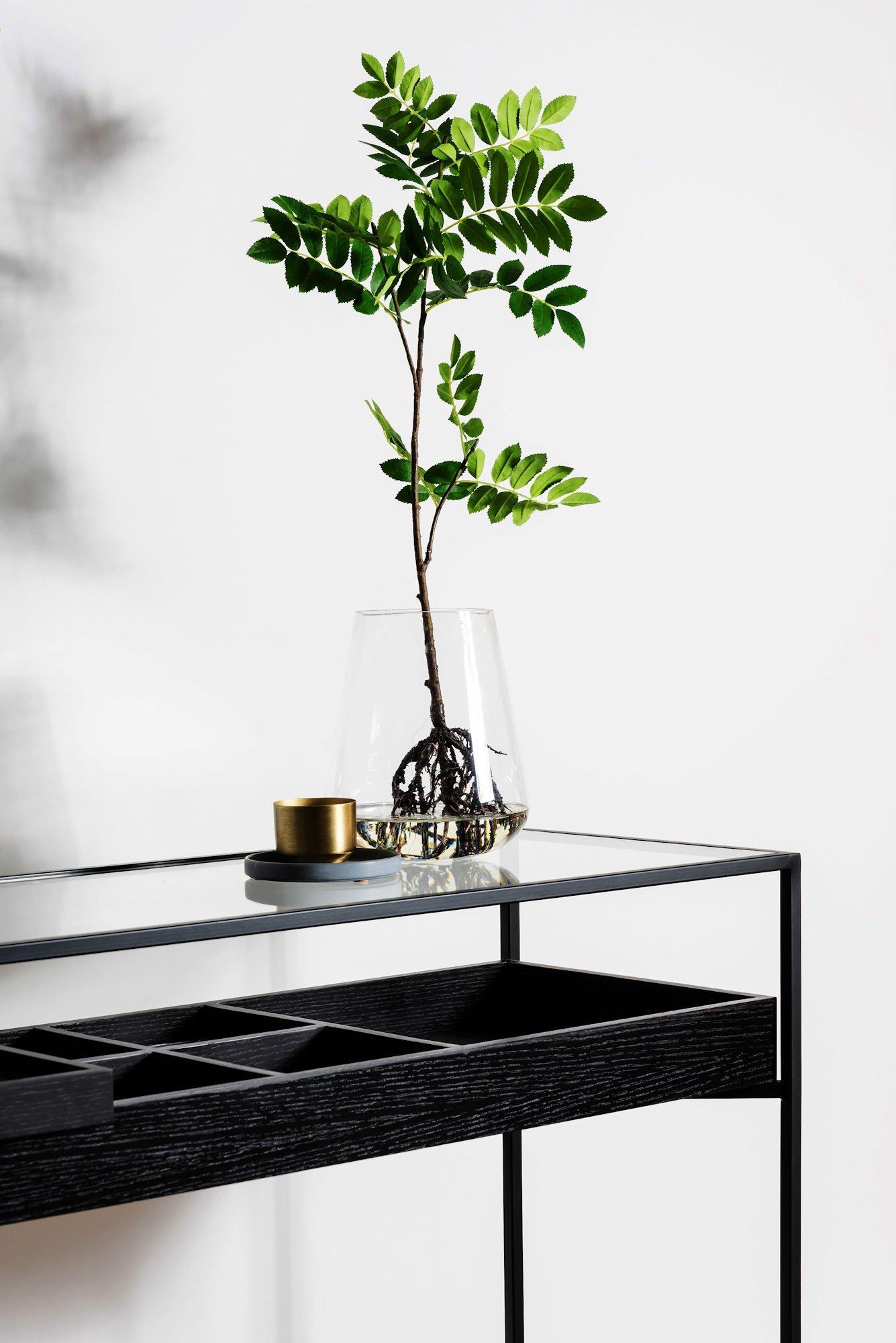 black slimline console with green plants in glass vase botanical interior design