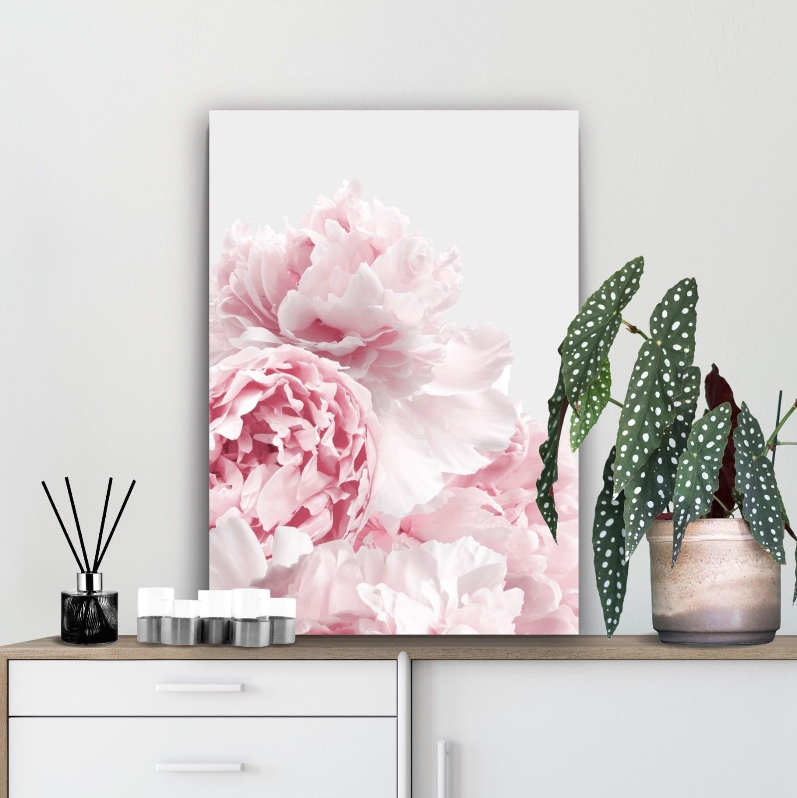 blush peonies wall art by print and proper