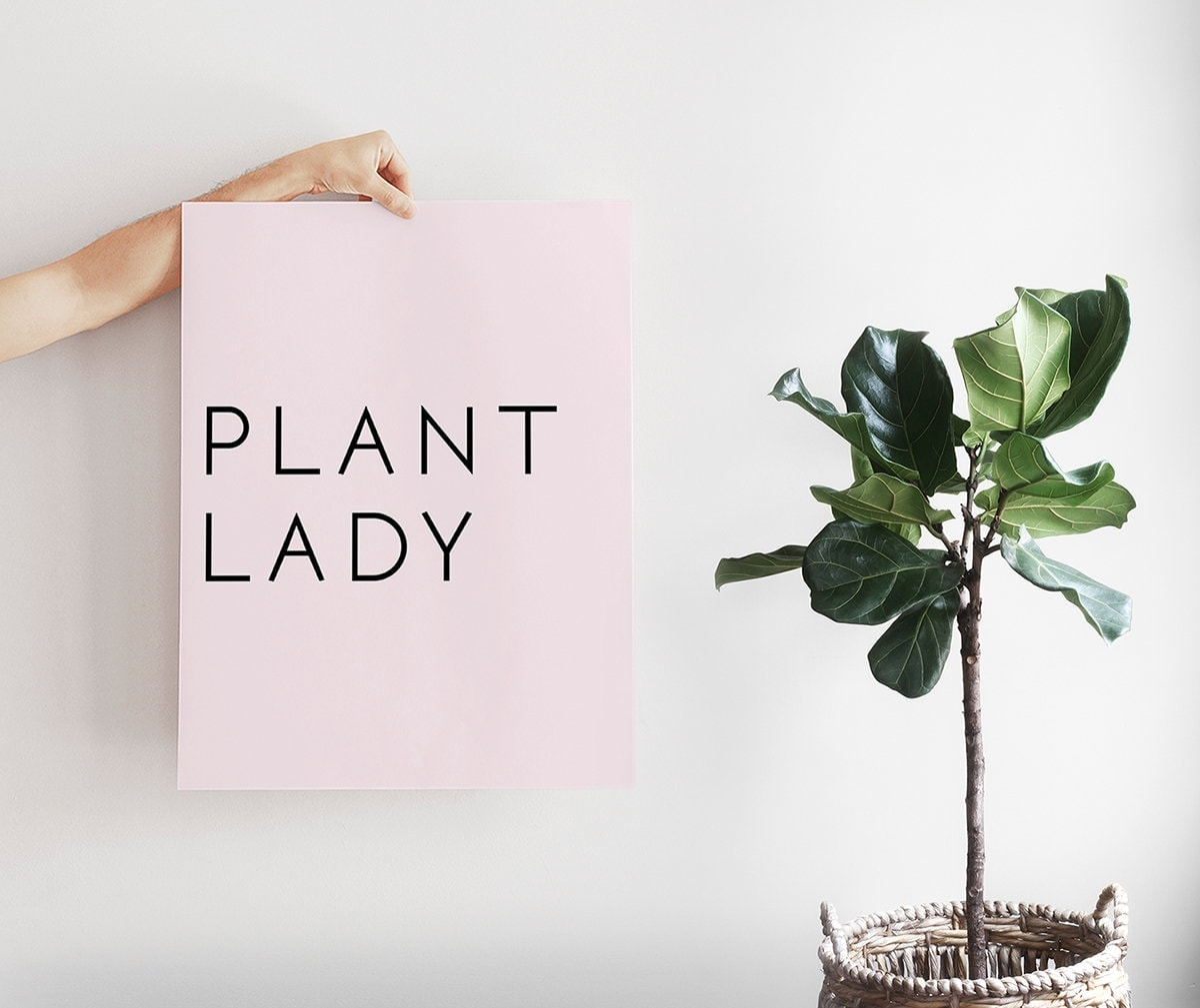 plant lady print in blush pink by the print annex