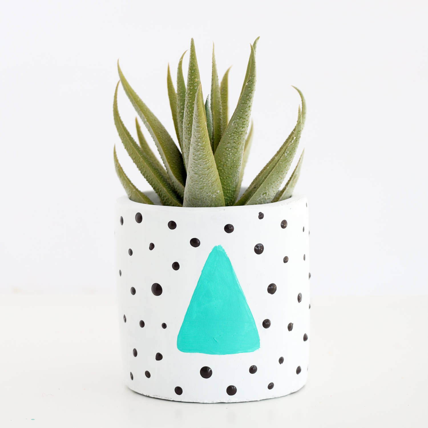 80s style plant pot display ideas from kailochic