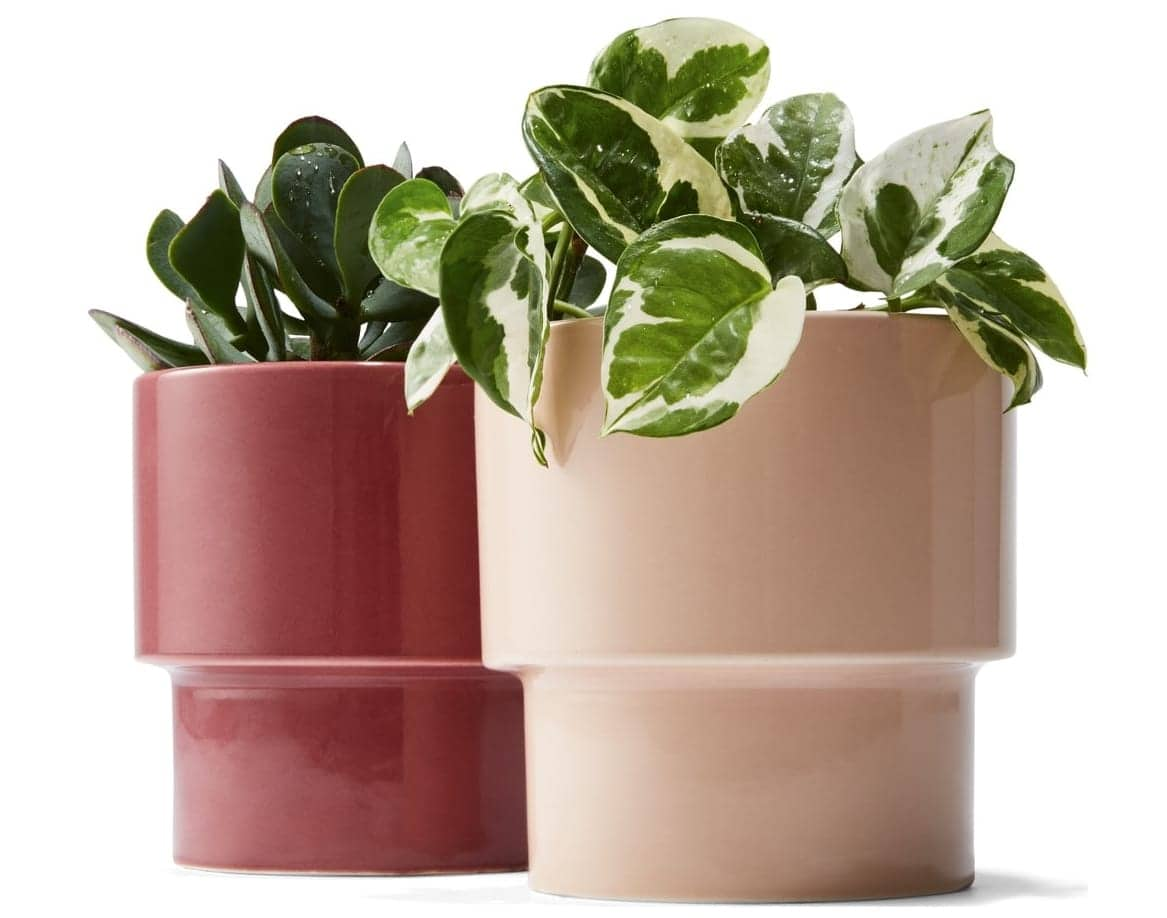 kmart plant pots in burgundy and blush