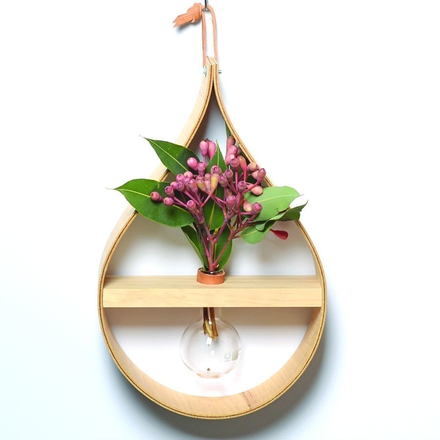 stix and flora raindrop plant display shelf