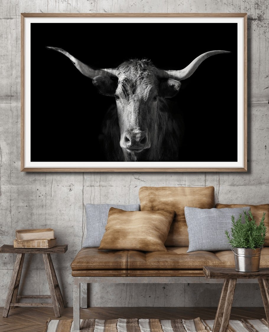 bull with horns artwork by the horns cow art prints