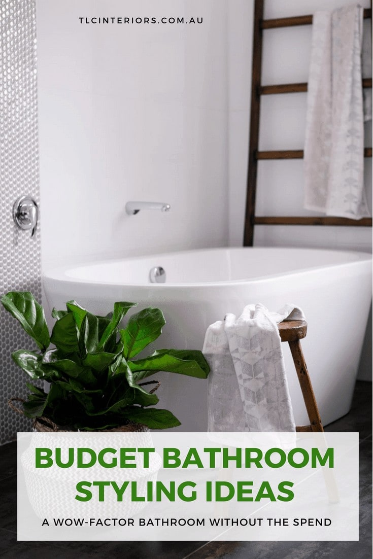 fiddle leaf fig in bathroom with white tiles and industrial ladder