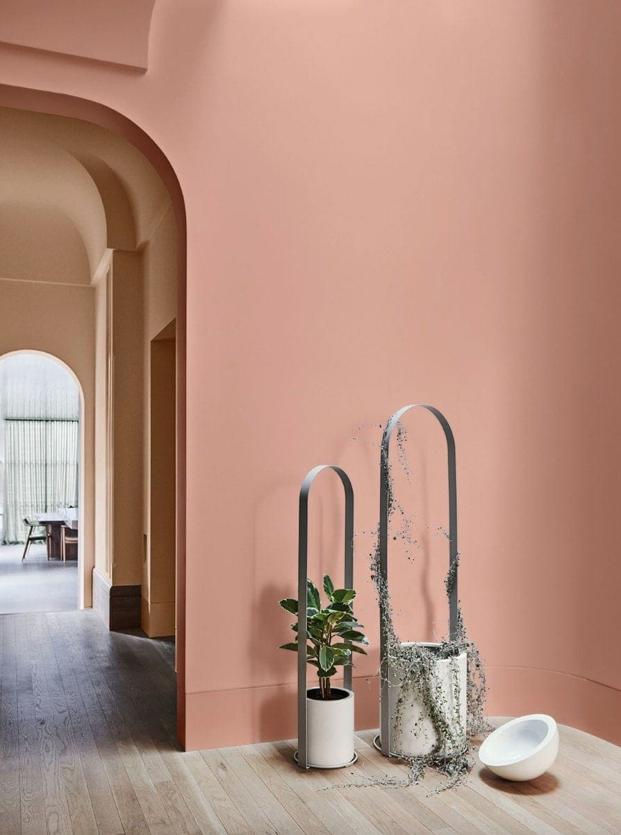 coral feature wall pantone colour of the year 2019 home colour trends