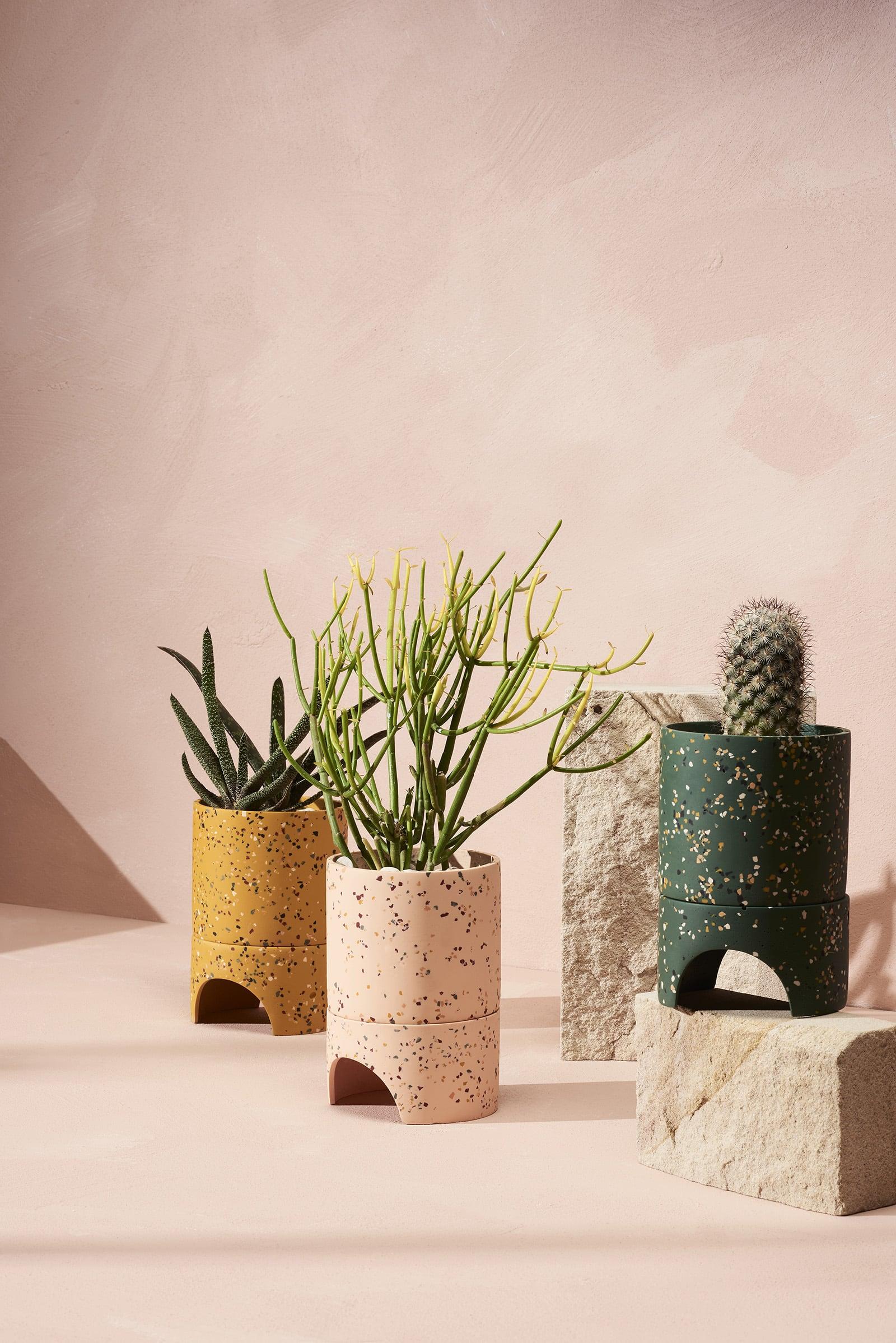 capra designs terrazzo plant pots in terracotta and dark green