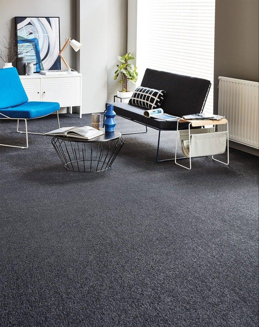 choice flooring eternity carpet for pets dyed nylon
