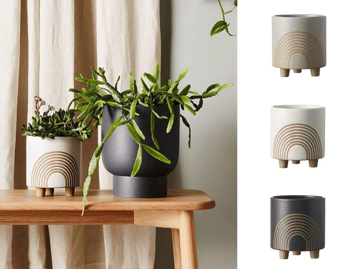 indoor plant pot designs evergreen planter pot life interiors