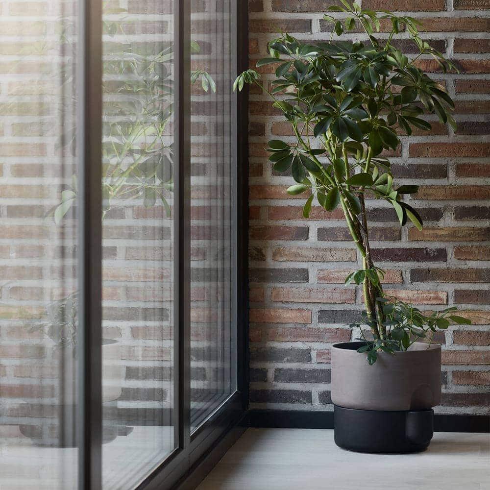 oasis terracotta indoor plant pot design rj living