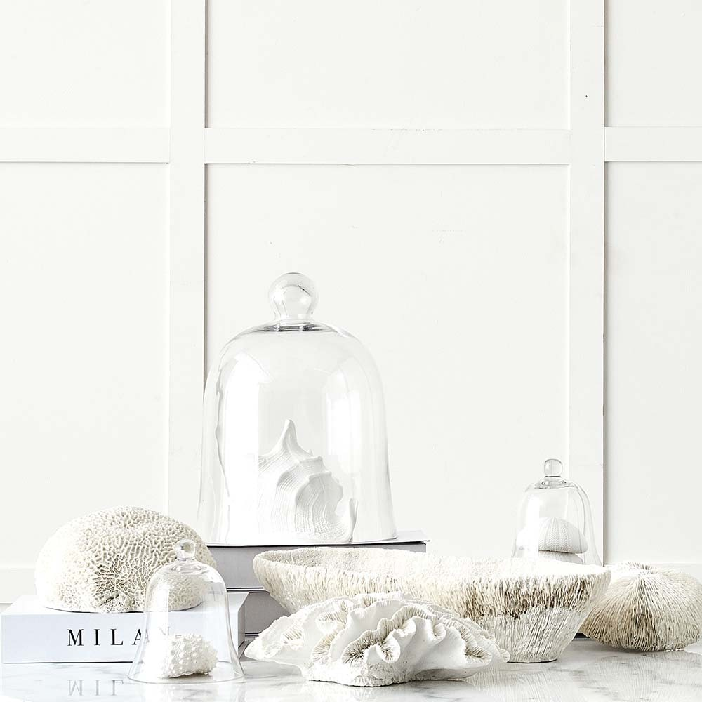 decorative white coral from provincial home living