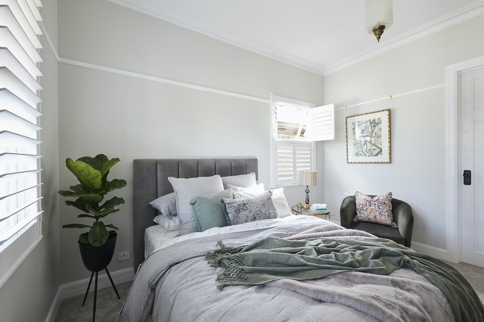 The Block 2020 Daniel and Jade Guest Bedroom with grey upholstered bed and fiddle leaf fig